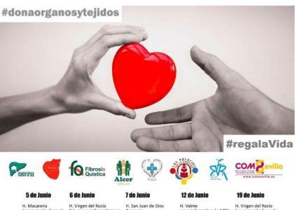 Día del Donante de órganos y tejidos, 6 junio 2018