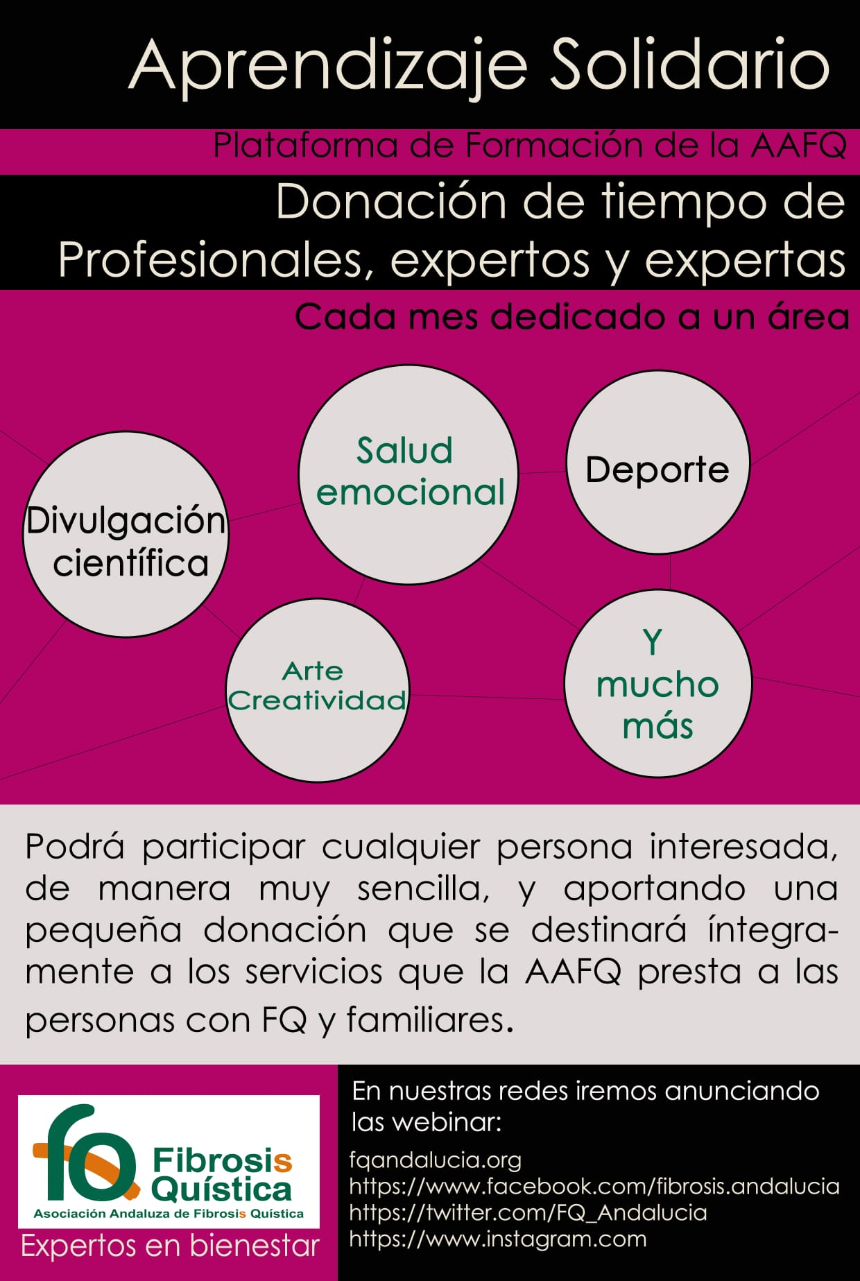 Plataforma de Formación de la Asociación Andaluza de Fibrosis Quística «Aprendizaje Solidario»